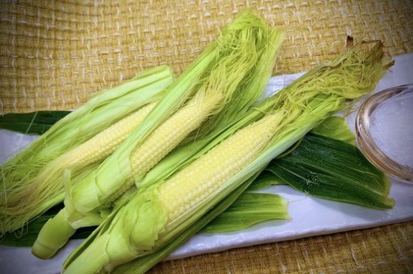 〖蒸し焼きヤングコーン〗の作り方 夏野菜レシピ 簡単 甘くて美味しい食べ方